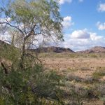 Yuma Arizona Mobile Home Park